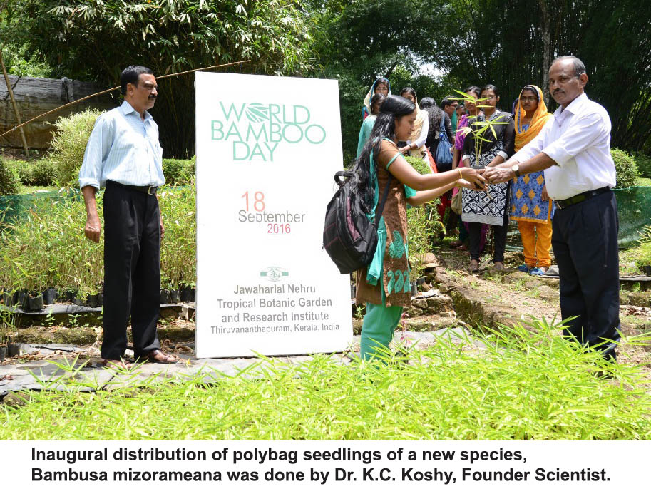 World Bamboo Day celebrated in JNTBGRI - Jawaharlal Nehru Tropical